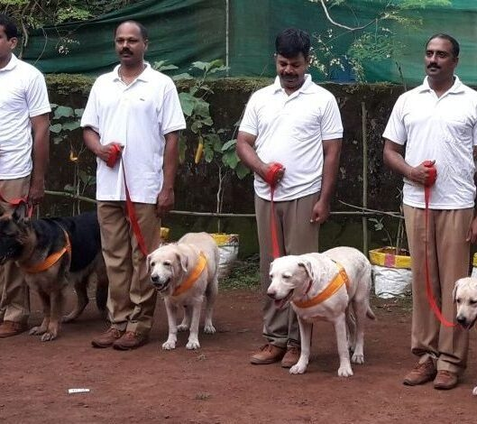Dog Squad in Mumbai standing with their dogs